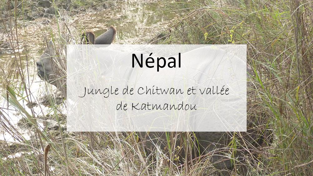 Népal : la jungle du parc Chitwan et vallée de Katmandou