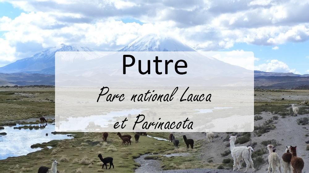 Chili : d'Arica à Putre, voyage dans le Norte Grande
