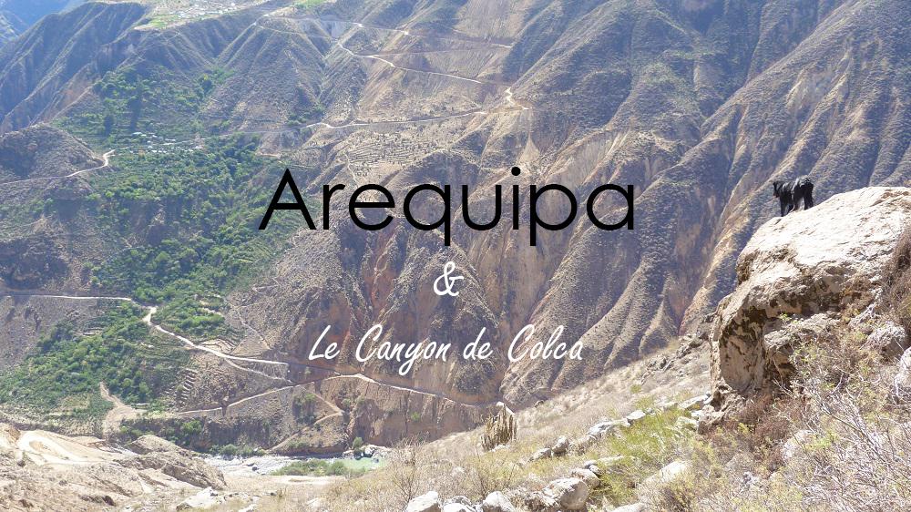 Arequipa et le Canyon de Colca