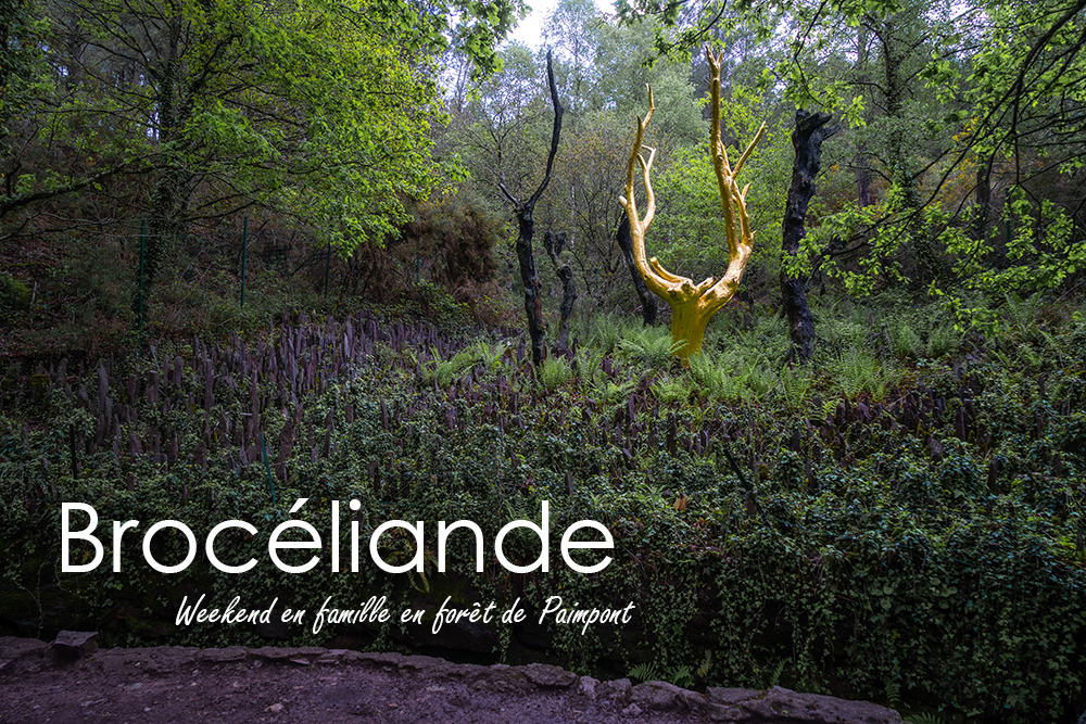 Forêt de Brocéliande : weekend en famille