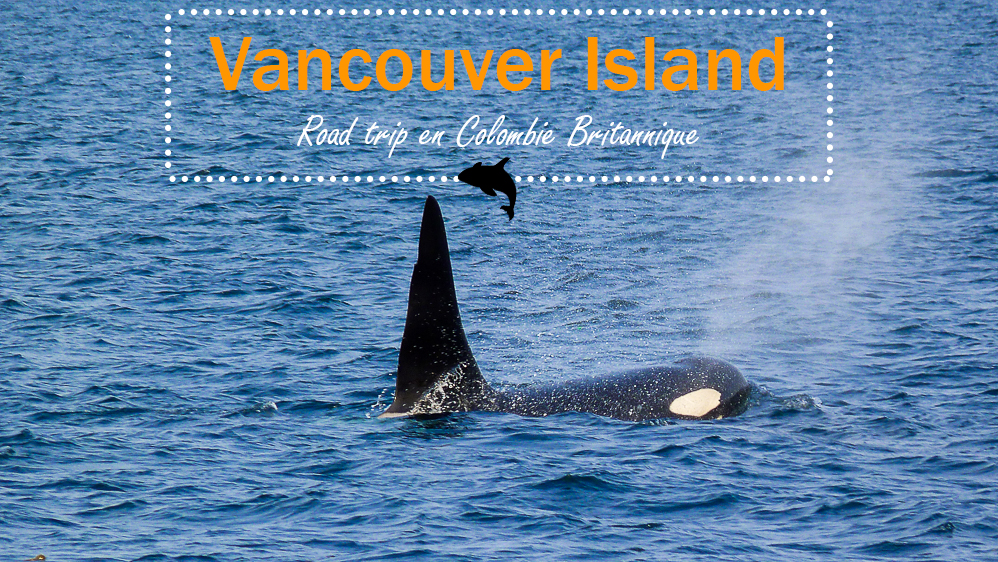 Canada : 1 semaine à Vancouver Island, road trip en Colombie Britannique