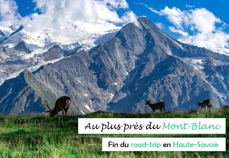 Mont-Blanc : une semaine au coeur des montagnes de Haute-Savoie